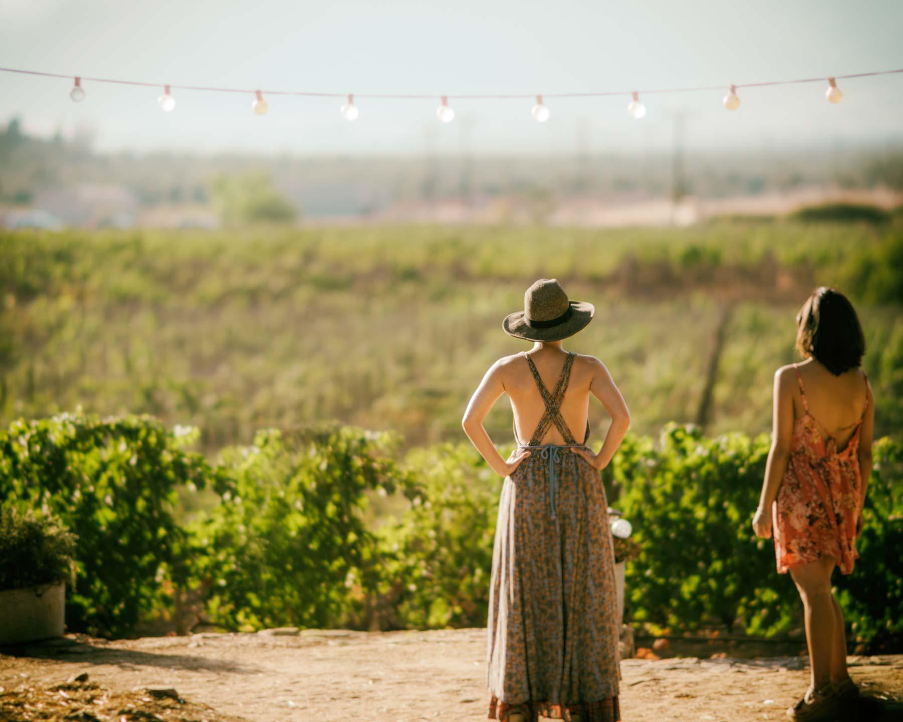 Ladies Looing into Vineyards